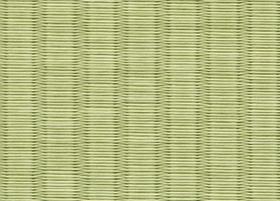 wasi-green1