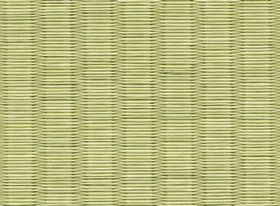 wasi-green2